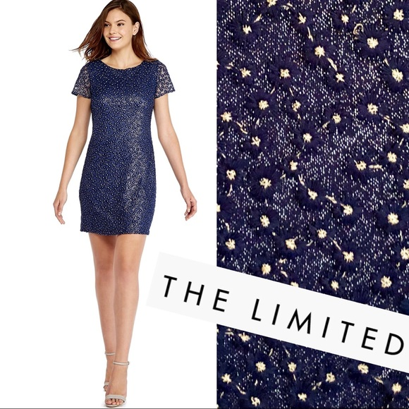 The Limited Dresses & Skirts - Blue Dress THE LIMITED Embroidered w Silver NWT